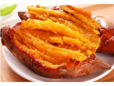 烟薯25真正的蜜薯